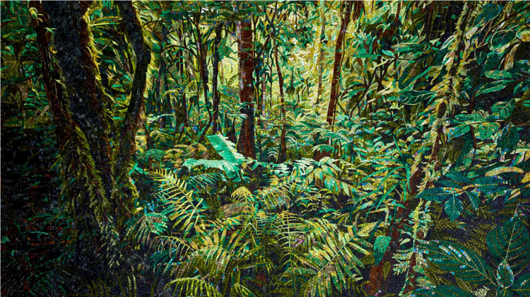 SICIS projekt: Regenwald